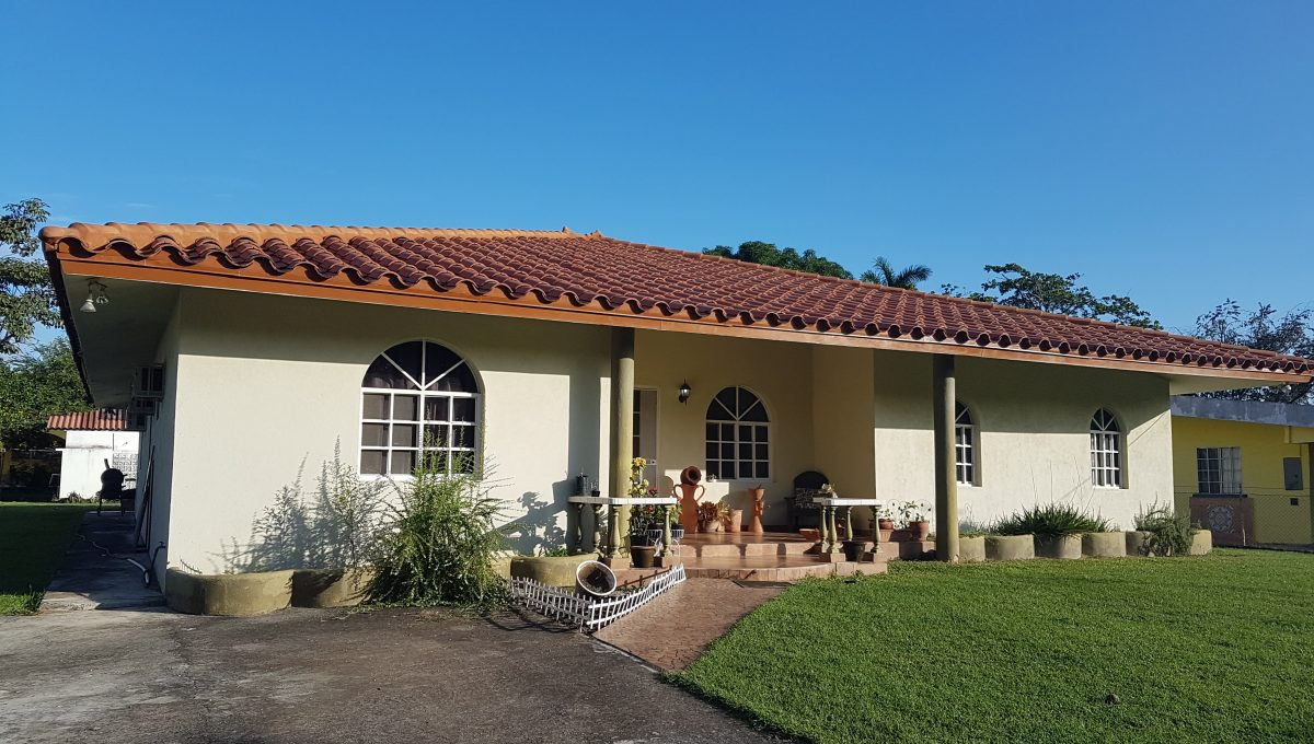 Panama-pid119-36